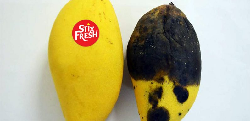 This Sticker May Help Your Fruit Stay Fresh for up to Two Weeks Longer