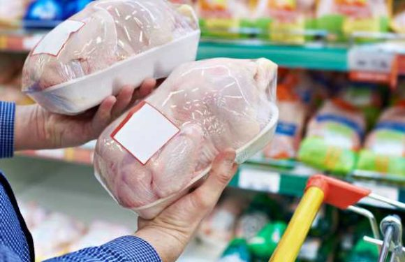 America's Top Chicken Producers Investigated for Price-Fixing Scheme