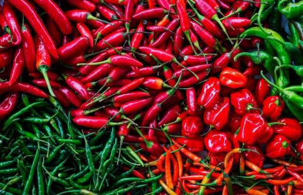 How to Cook With ChiliPeppers If You're Not a Heat Freak