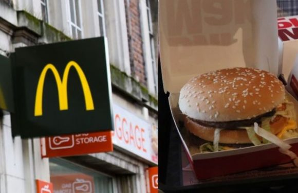 McDonald's closing amid coronavirus – how can you make the burgers at home?