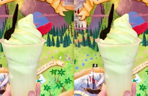 Disney Is Selling A Peter Pan-Inspired Dole Whip Float That Comes Topped With A Red Chocolate Feather