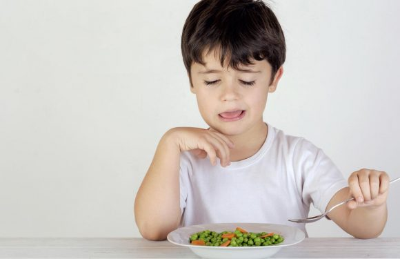 Mom-Approved Advice For Dealing With Picky Eaters
