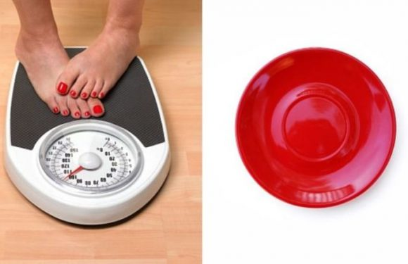 How to lose weight: Why eating from a red plate will help you avoid overeating