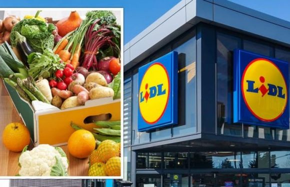 Lidl shopper raves about £1.50 'perfect' fruit and veg box – 'This would've cost me £15'