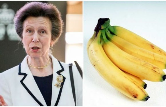 Princess Anne diet: Royal shares how she likes to eat her bananas – can you relate?